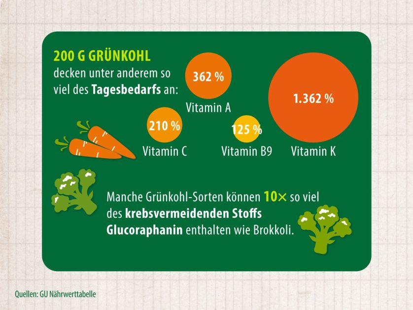 Info Grafik über die Inhaltsstoffe der Grünkohlpflanze