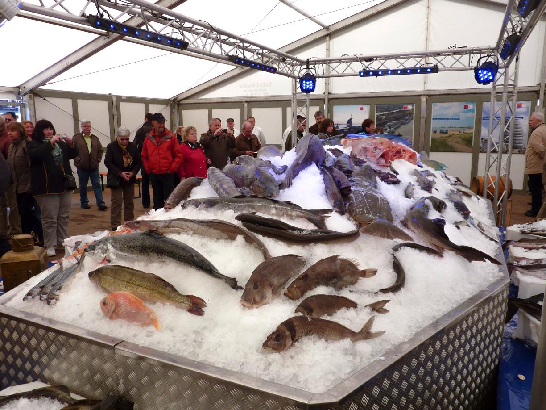 Fischbett Tipps für lange Maiwochenenden