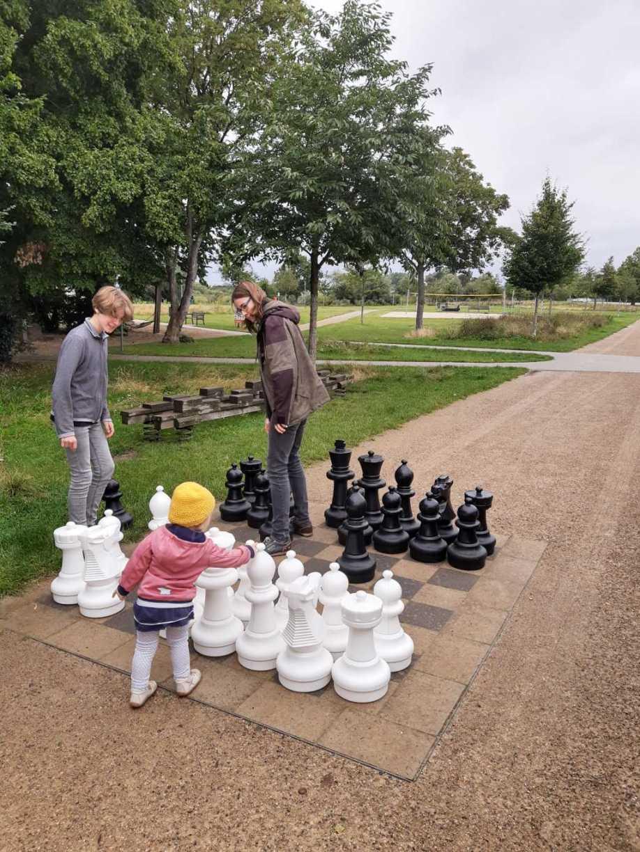 ac verden schach kinder