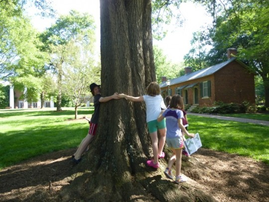 kids-measuring-tree-with-hugs-540x405
