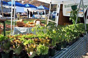 weekly-meal-plan-Davidson-Farmers-Market