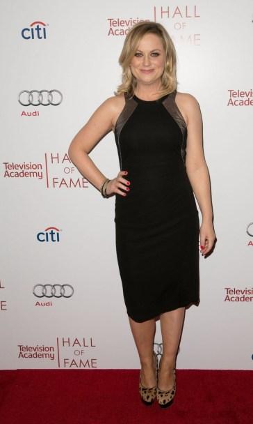 Amy Poehler - Hall of Fame Gala!