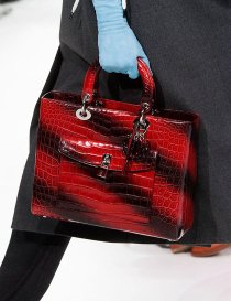 dior-black-red-stripe-croc-bag-pfw-aw-2014_GA