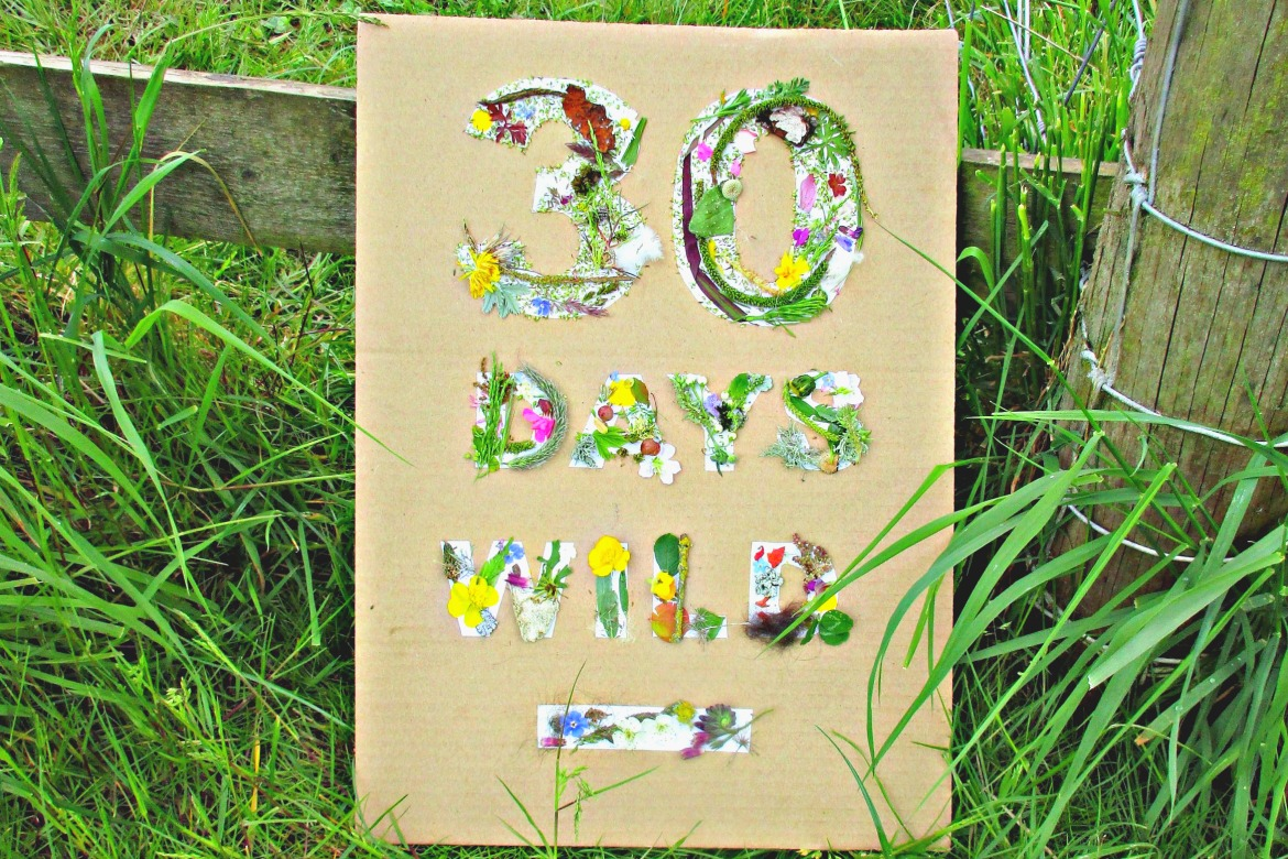 The Wildlife Trusts are challenging us all to join in with their 30 Days Wild Campaign and to feel happier, healthier and more connected to nature by doing something wild every day throughout June.