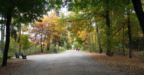 Point Pleasant Park in Halifax, Nova Scotia a great free activity