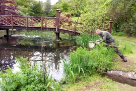 Dan the Park Ranger pond dipping at Bryngarw Country Park