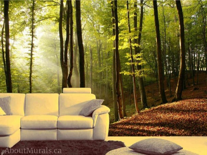 Sunbeams Wallpaper, as seen on the wall of this living room, features sunshine streaming through a forest of green trees. Forest wall murals sold by AboutMurals.ca.