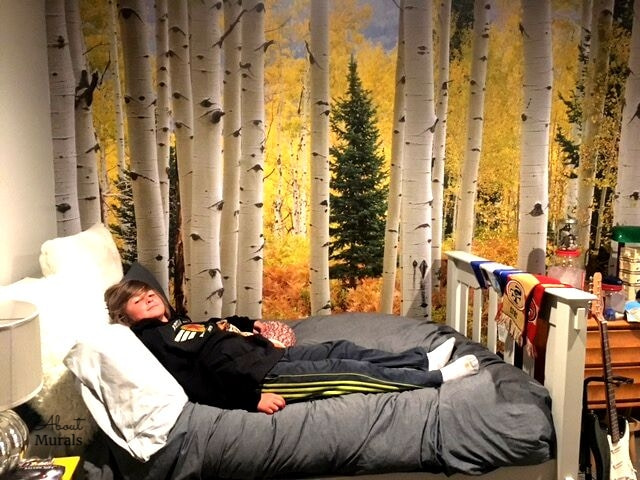 This yellow Aspen tree wallpaper is seen in a boys room. Birch tree wallpaper sold by AboutMurals.ca