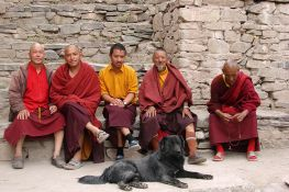Buddhist monks resting at Leh
