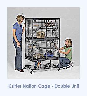 pet rat cage, rat cage, best rat cage, best pet rat cage, about pet rats, pet rats, pet rat, fancy rats, fancy rat, ratties, rattie, pet rat care, rat care, pet rat info, pet rat supplies