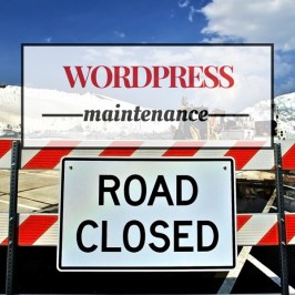 Recommended WordPress Website Maintenance