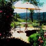 an umbrella table on the brick patio in the garden