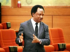 Shoprite's Exit Will Help Local Supermarkets Grow – Shehu Sani