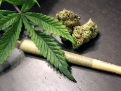 Marijuana Removed By UN From List Of World's Most Dangerous Drugs As Nigeria Oppose The Move