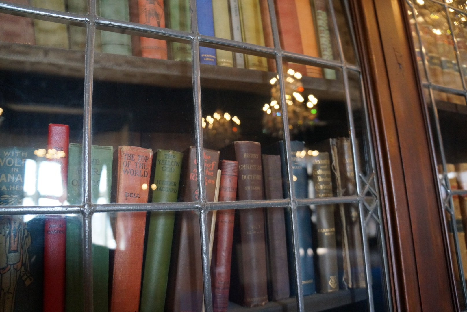 Casa Loma - books