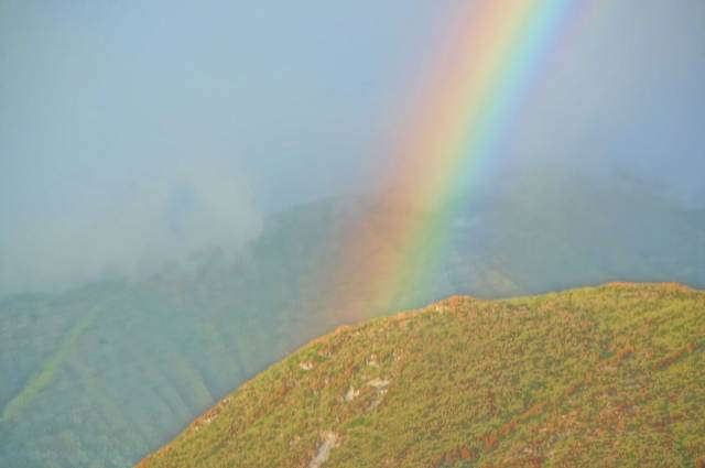 Rainbow-maui