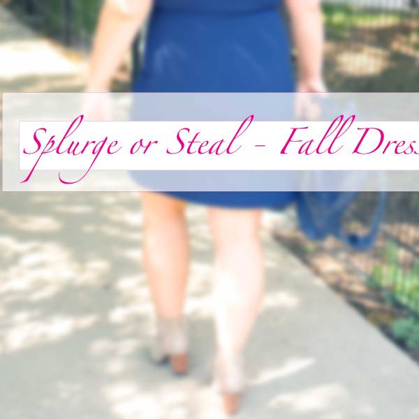 Splurge or Steal for Fall – Dress Edition