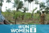Moringa women: using solar energy to grow women's incomes in rural Guinea