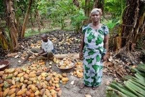 cocoa farmer woman forifori
