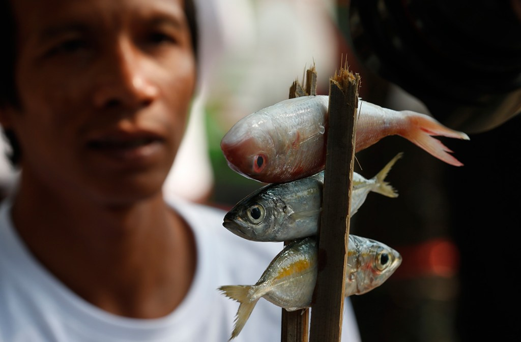 4 February, 2016: A local fisherman holds fishes during a protest to demand the increase of their fishing limits outside the Ministry of Agriculture and Cooperatives in Bangkok, ThailandChaiwat Subprasom/ Reuters