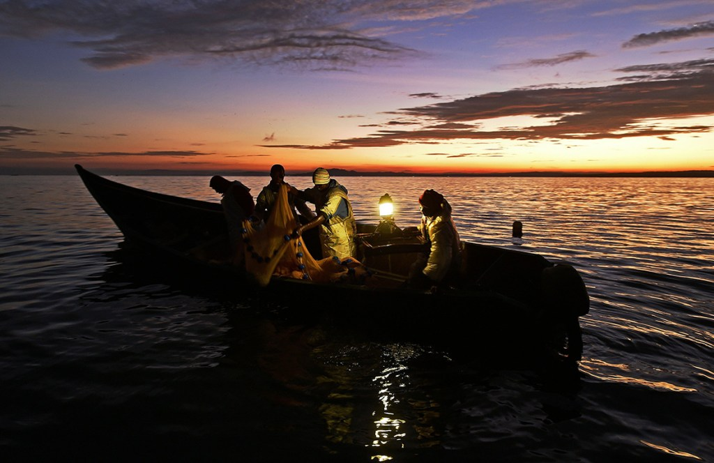 3 March 2016: Kenyan fisherman pull up their nets in the early morning as they fish on Lake VictoriaCarl De Souza/ AFP