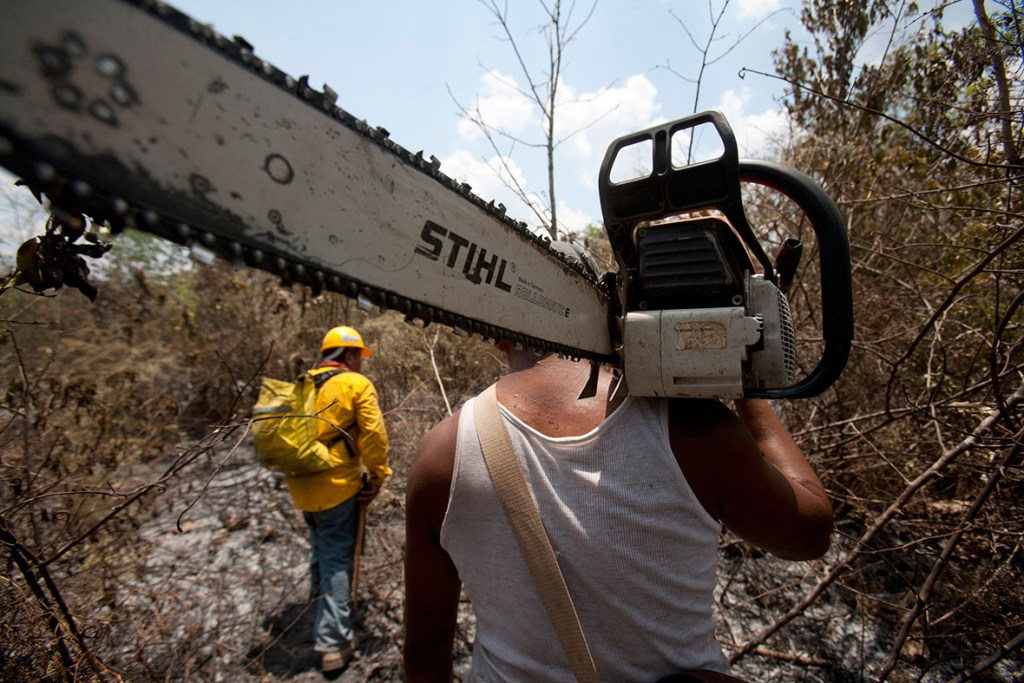 18 April 2011: An employee of the National Forestry Commission carries a chainsaw in a burnt area near Cancun, Mexico (Gerardo Garcia/ Reuters)