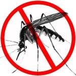 Malaria-Day-Picture