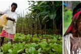 Empowering Women Farmers To Harness The Power Of Development In Africa