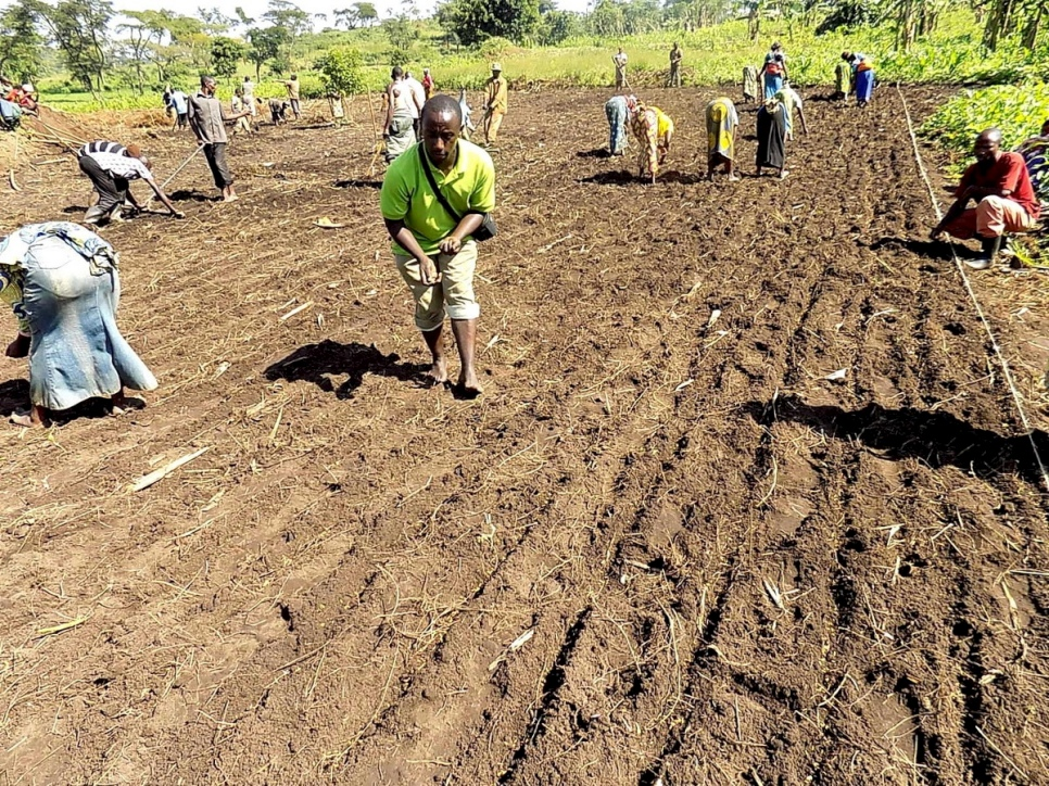 Congolese refugees plant rice seed in the fertile land at Rwamwanja settlement in south west Uganda. © UNHCR/Eunice Ohanusi
