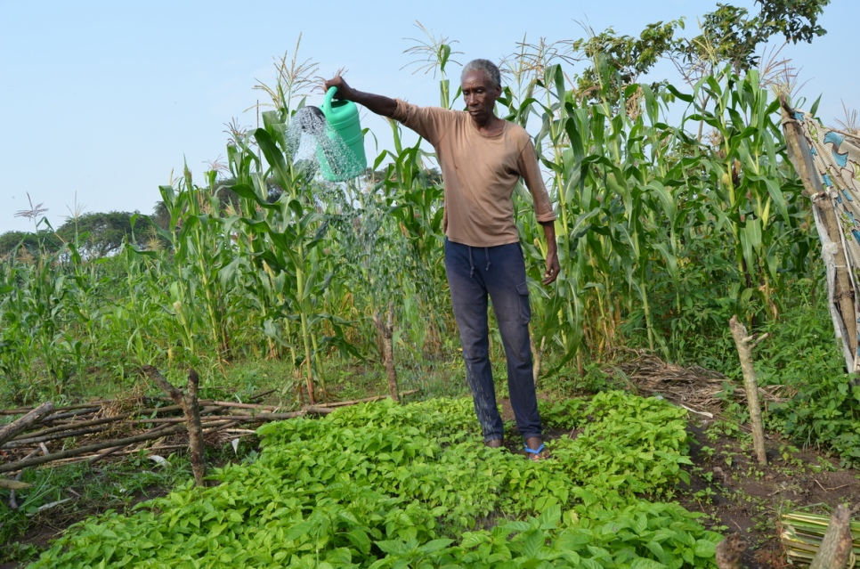 """There is nothing like cultivating crops that can earn you a lot of money,"" says Congolese refugee John Bosco Kalaginla as he waters his chilli pepper crop in his garden at Rwamwanja settlement in south west Uganda. © UNHCR/Eunice Ohanusi"