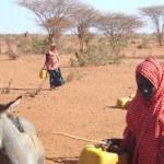 Drought in Somalia