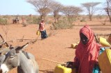 Mobile Phone Warnings Set To Aid Climate-Vulnerable Somali Nomads