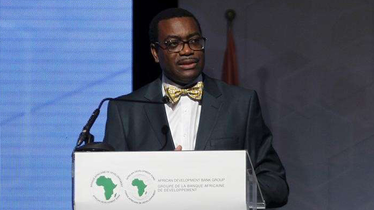 Akinwumi Adesina Light Up Project