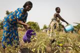 African Countries Get New Tool To Predict Climate-Related Disasters