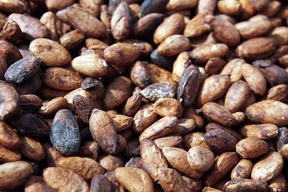 Cocoa beans dry on a table in a village outside of Kumasi, Ghana. Photographer: Jane Hahn/Bloomberg