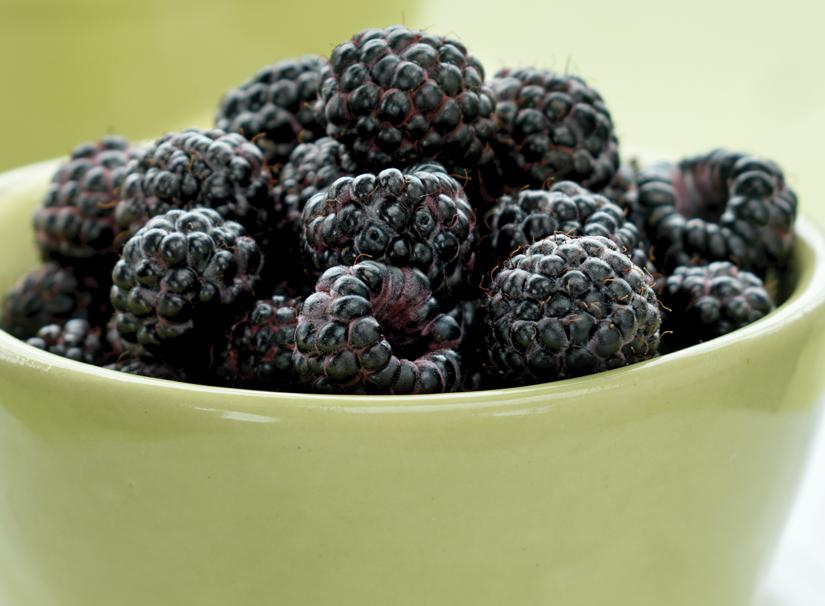 blackraspberries