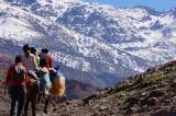 Two Female Backpackers Killed In Morocco, Suspect Arrested