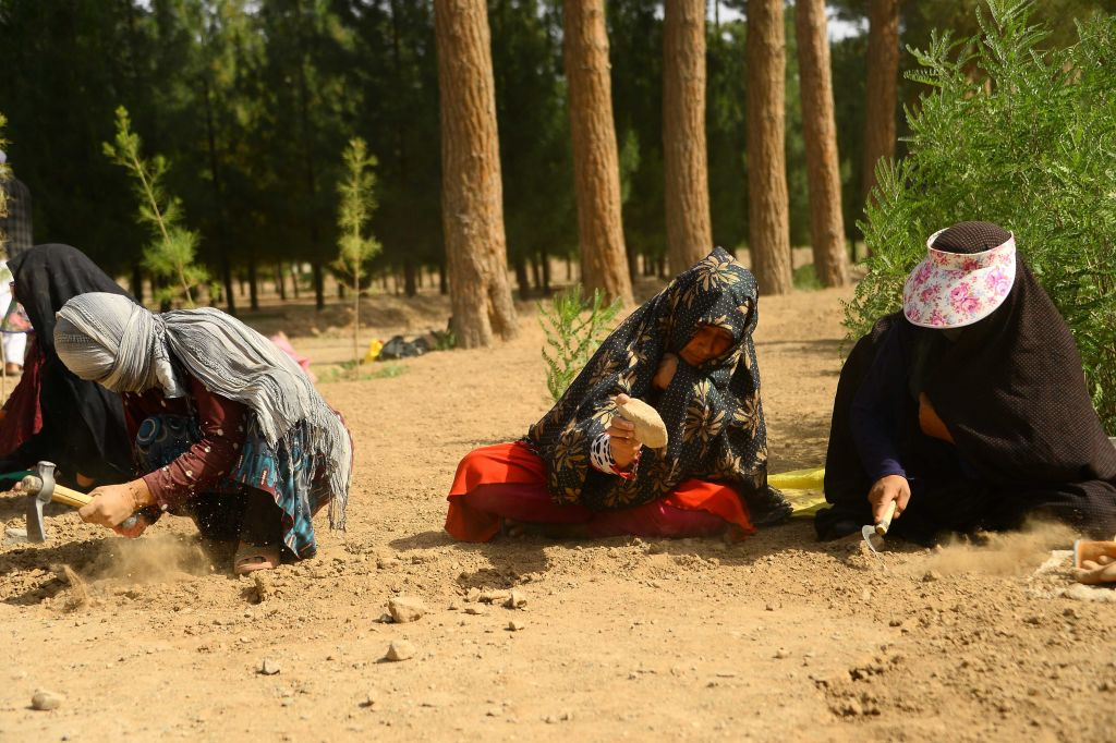 In this photograph taken on June 2, 2018, Afghan women work the soil at a park in the city of Herat. - According to the World Bank, 19 percent of Afghan women had official jobs in 2017. (Photo by HOSHANG HASHIMI / AFP) / TO GO WITH Afghanistan-Women-Employment-Gardens-Social,FEATURE by Anne CHAON        (Photo credit should read HOSHANG HASHIMI/AFP/Getty Images)