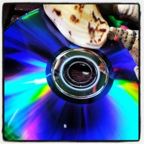 CD with shell