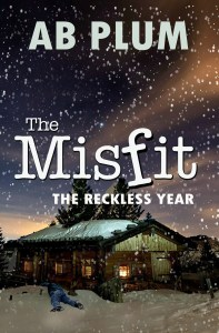 Book Cover: The Reckless Year