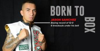 Born to Box : Jason Sanchez