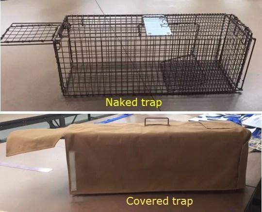 TNR traps