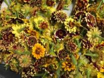 Drying Persian Carpet Zinnias. Same method as shown above. These Zinnias add the most beautiful touch to dried arrangements and yet are the most time-consuming to dry.