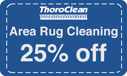 Area rug cleaning by Thoroclean!