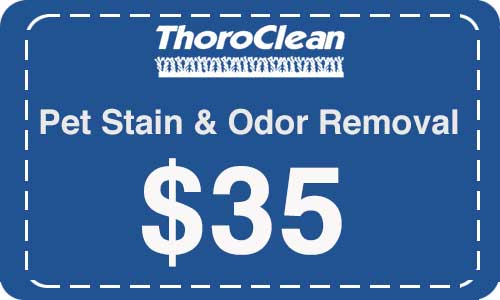 Pet stain cleanup by Thoroclean!