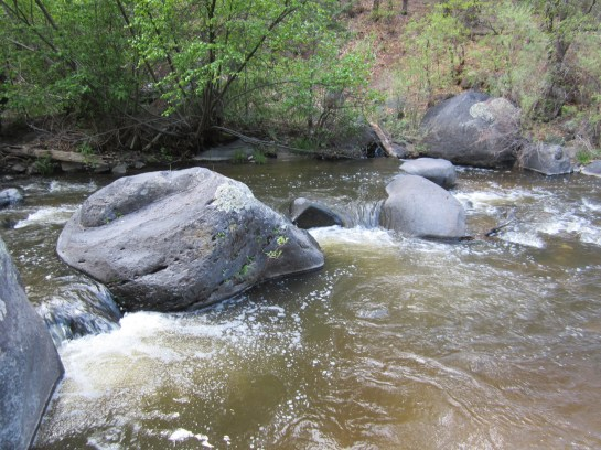 East Fork of the Jemez River Near Battleship Rock