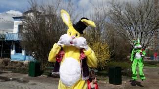 Lapinous' Foufous echassiers rebondissants loufoques parade animation evenementiel lapins fantaisie extravagance sautillants mascottes paques (11)