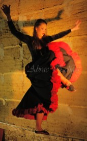flamenca danse sur fil de fer danse flamenco spectacle rouge et noir cirque animation evenementiel guitare espagnol gitan (16)