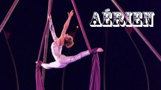 aerien cirque spectacle tissu evenementiel animation acrobatie trapeze
