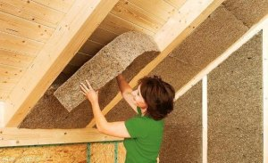 industrial hemp and hemp insulation